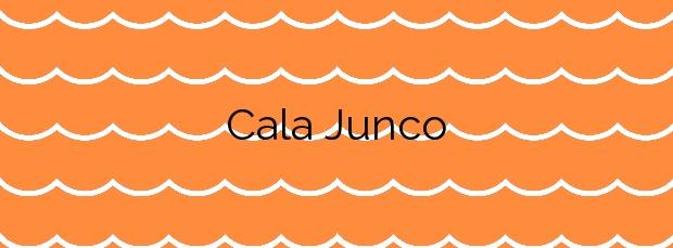 Información de la Cala Junco en Adra