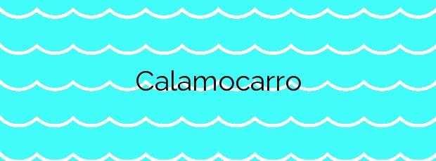 Información de la Calamocarro en Ceuta