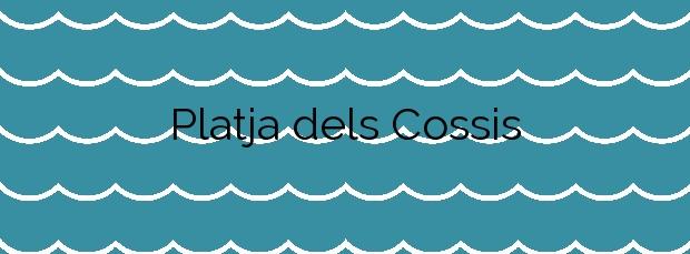Información de la Platja dels Cossis en Vinaròs