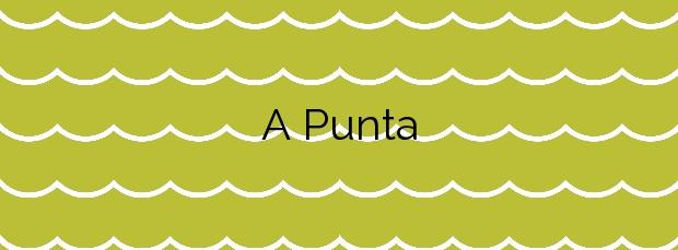Información de la Playa A Punta en Vigo