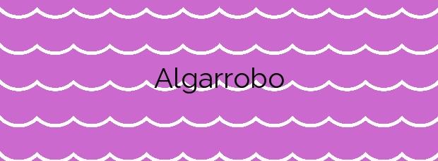 Información de la Playa Algarrobo en Algarrobo