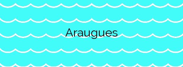 Información de la Playa Araugues en Cambados