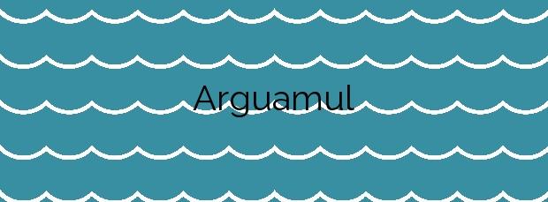 Información de la Playa Arguamul en Vallehermoso