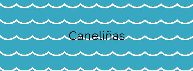 Información de la Playa Caneliñas en Sanxenxo