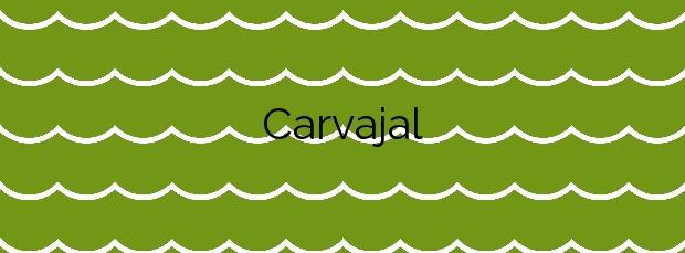 Información de la Playa Carvajal en Fuengirola