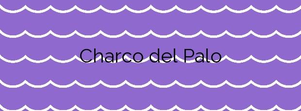 Información de la Playa Charco del Palo en Teguise