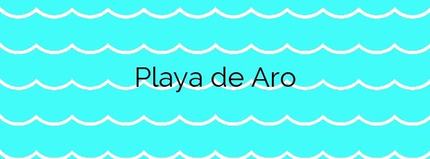 Información de la Playa de Aro en Castell-Platja d'Aro