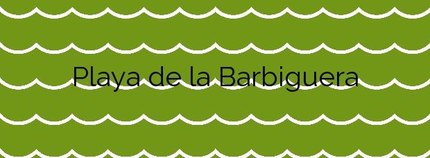 Información de la Playa de la Barbiguera en Vinaròs
