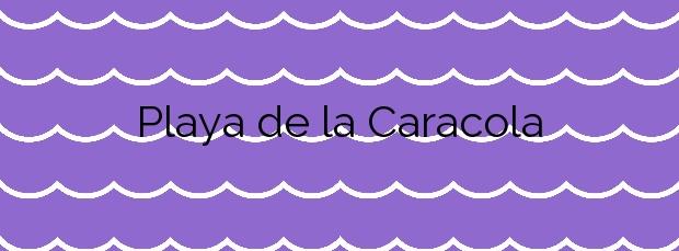 Información de la Playa de la Caracola en Benicarló