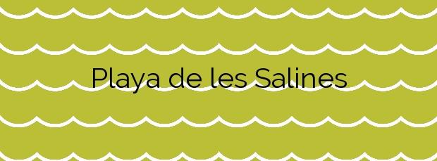 Información de la Playa de les Salines en Vinaròs