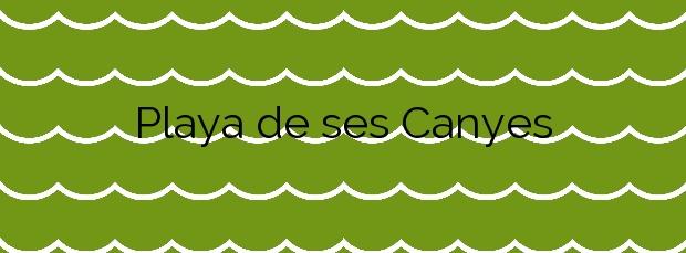 Información de la Playa de ses Canyes en Formentera