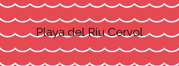 Información de la Playa del Riu Cervol en Vinaròs