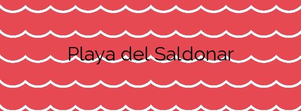Información de la Playa del Saldonar en Vinaròs