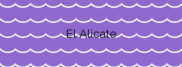 Información de la Playa El Alicate en Marbella