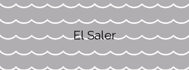 Información de la Playa El Saler en Valencia