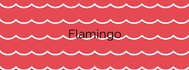Información de la Playa Flamingo en Yaiza