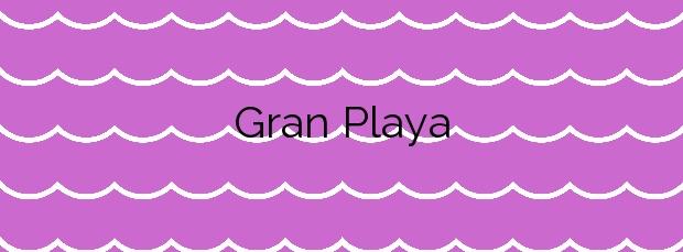 Información de la Playa Gran Playa en Santa Pola