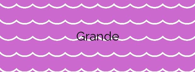Información de la Playa Grande en Arico