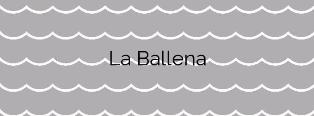 Información de la Playa La Ballena en Arona