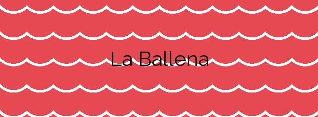 Información de la Playa La Ballena en Rota
