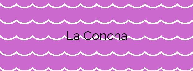 Información de la Playa La Concha en Los Alcázares