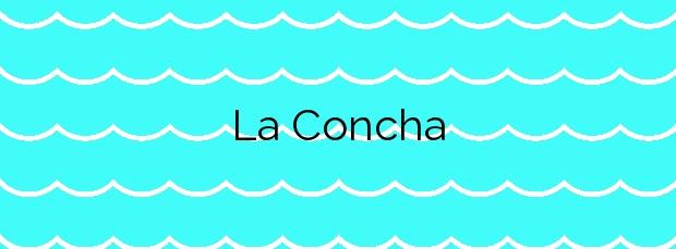 Información de la Playa La Concha en Oropesa del Mar