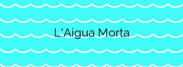 Información de la Playa L'Aigua Morta en Oliva