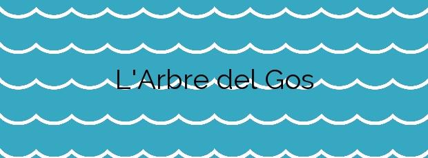 Información de la Playa L'Arbre del Gos en Valencia