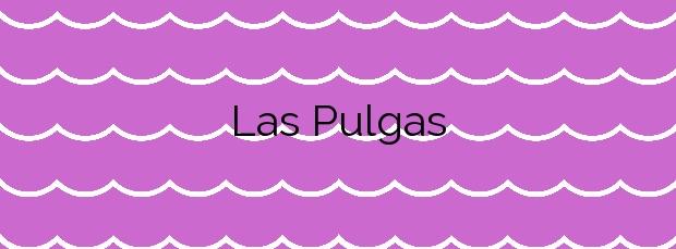 Información de la Playa Las Pulgas en Águilas