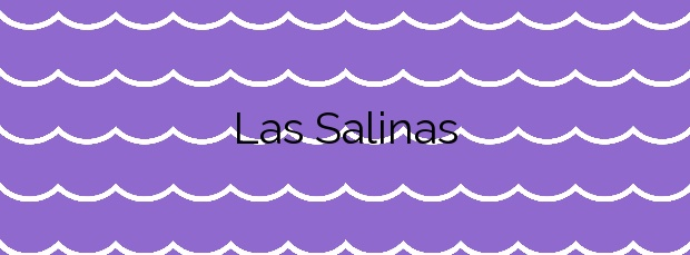 Información de la Playa Las Salinas en Agaete