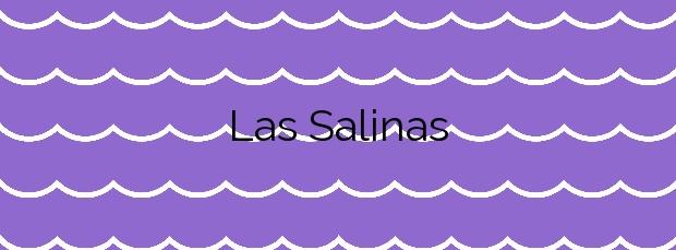 Información de la Playa Las Salinas en Arucas