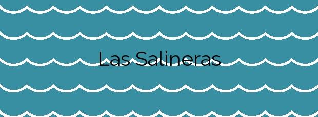 Información de la Playa Las Salineras en Villa de Mazo
