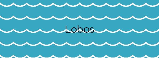 Información de la Playa Lobos en Sada