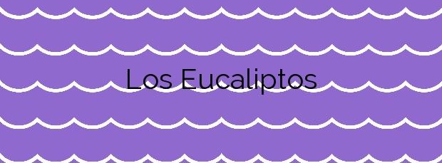 Información de la Playa Los Eucaliptos en Amposta