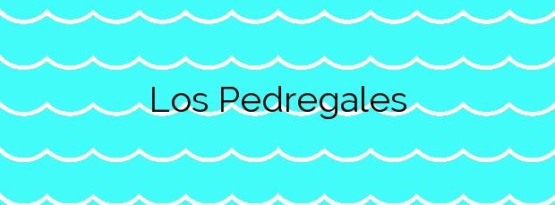 Información de la Playa Los Pedregales en Daimús