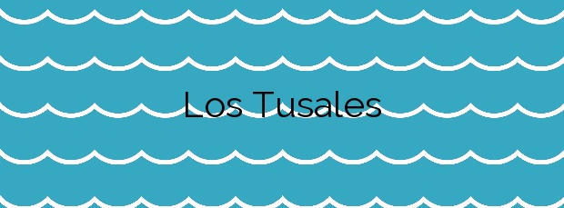 Información de la Playa Los Tusales en Guardamar del Segura