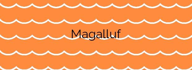 Información de la Playa Magalluf en Calvià