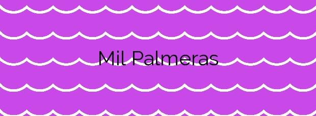 Información de la Playa Mil Palmeras en Orihuela