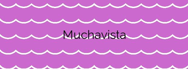 Información de la Playa Muchavista en El Campello
