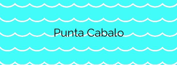 Información de la Playa Punta Cabalo en Vilaboa