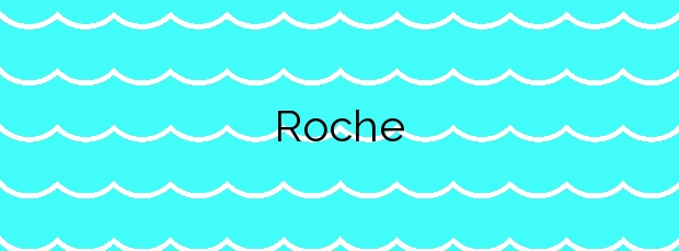 Información de la Playa Roche en Conil de la Frontera