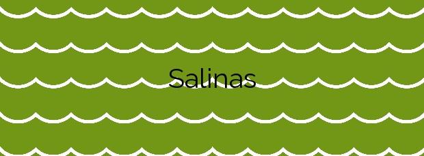 Información de la Playa Salinas en Valdés