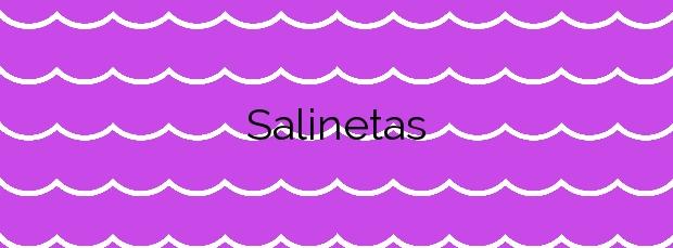 Información de la Playa Salinetas en Telde