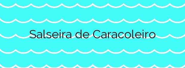 Información de la Playa Salseira de Caracoleiro en A Laracha