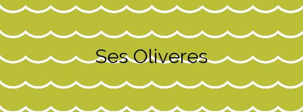 Información de la Playa Ses Oliveres en Cadaqués