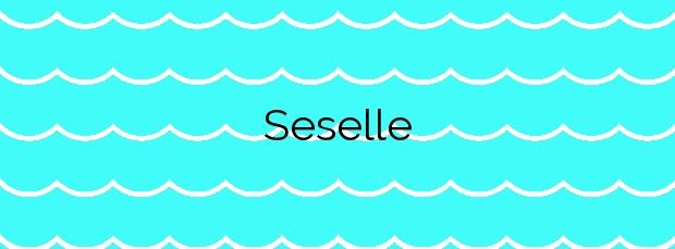 Información de la Playa Seselle en Ares