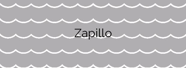 Información de la Playa Zapillo en Almería