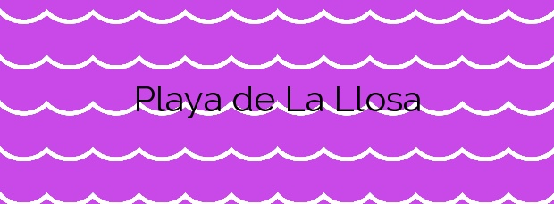 Información de la Playa de La Llosa en La Llosa