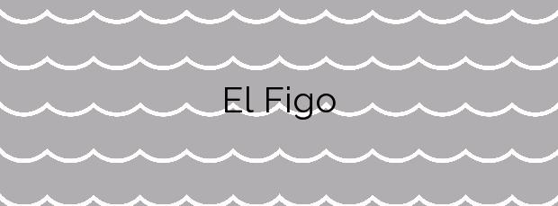 Información de la Playa El Figo en Tapia de Casariego