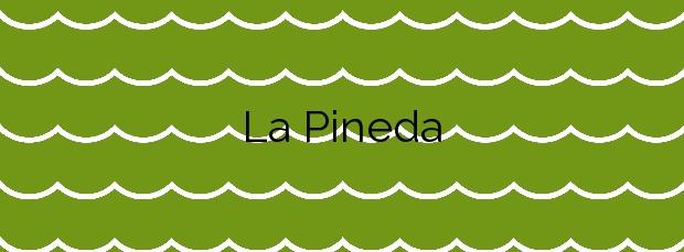 Información de la Playa La Pineda en Vila-seca